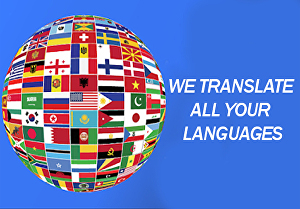 I will do typing job or translate any language in text or audio in 24 hrs