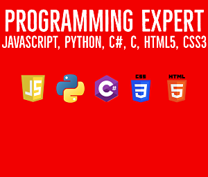 I will do your programming assignments in javascript, python, c and csharp