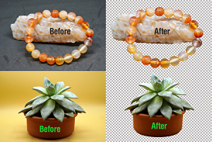 I will do background removal and photoshop editing professionally