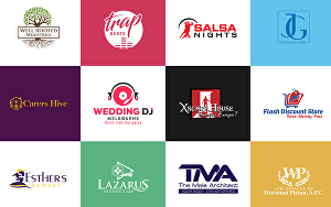 I will design Professional Business Logo and Branding