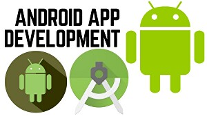 I will build a two page Android App or MVP