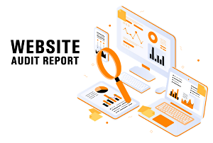 I will provide website SEO audit report in PDF