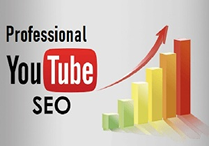 I will be your youtube video SEO specialist