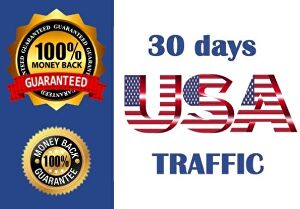 I will drive 10,000  real USA traffic for a month