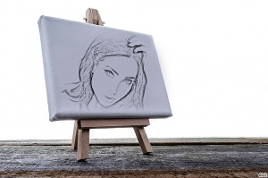 I will create a sketch of your picture and I'll put it on  a drawing canvas