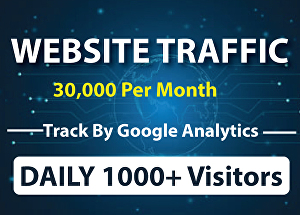 I will Drive Daily 30,000+ Real Traffic Worldwide for One Month