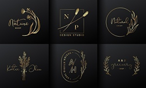 I will create 5 creative logo design within 24 hours