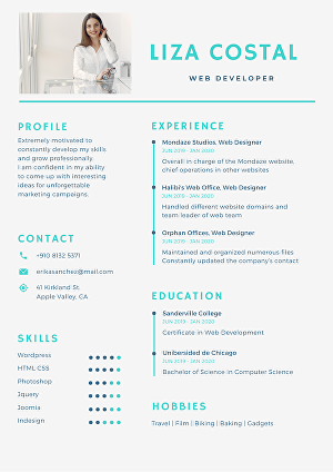 I will do professional resume designing and editing service for you