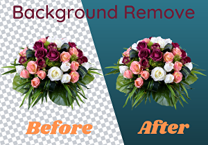 I will do 35 photos background removal