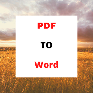 I will convert pdf file to word,PowerPoint, excel, jpg