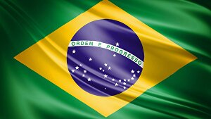 I will do a translation of up to 300 words from English to Brazilian Portuguese in 24 hours or le