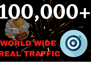 I will DRIVE 100,000 TARGETED Human Traffic to your Website or Blog