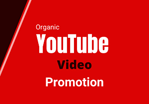 I will do an organic youtube video promotion