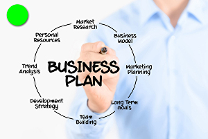 I will Write a Comprehensive  Excellent Business Plan