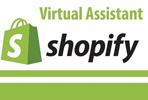 I will be your customer service agent or Shopify virtual assistant