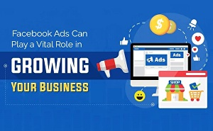 I will craft enticing Facebook ads for your business