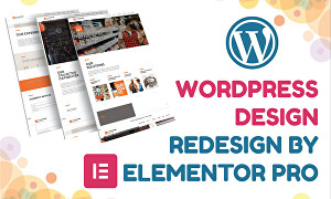 I will design or redesign wordpress website with elementor pro