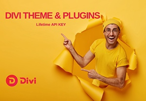 I will install premium Divi Theme and Plugins with an API key for lifetime updates