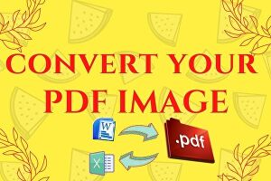 I will convert your pdf to word, excel and editable document