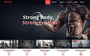 I will design attractive fitness, gym, and sports website in wordpress