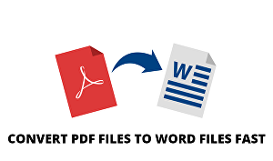I will do Professional Files Conversions PDF to word And Word to PDF