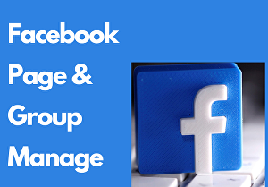 I will Manage facebook group & page
