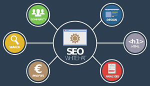 I will do website onpage SEO and technical optimization of your site