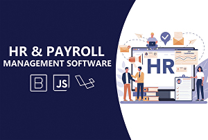 I will create payroll and HR  software