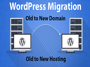 I will migrate wordpress website from one domain or hosting to another domain or hosting