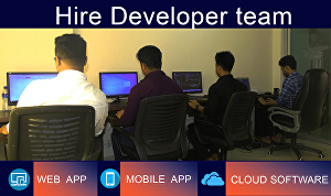 I will develop software with my developer team