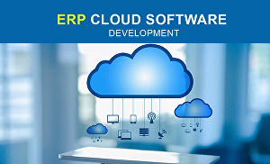 I will create ERP or cloud software with android and IOS app