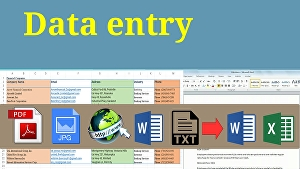I will do quick Data Entry and Typing works