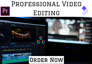 I will do professional video editing