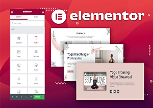I will create Elementor landing page, website with modern and professional look