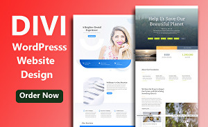 I will Clone And Build A Website With Divi Theme And Divi Builder