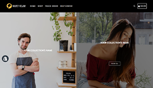 I will create one product shopify store, shopify website