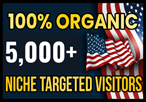 I will Drive real USA targeted web traffic