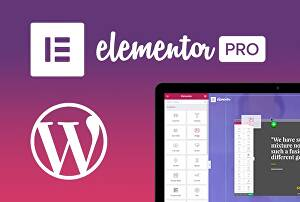 I will make a WordPress website, landing page with elementor pro
