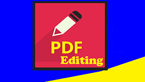I will edit your pdf file