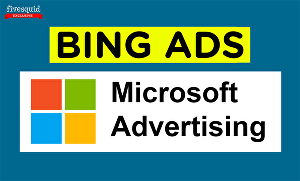 I will setup and optimize Bing Ads or Microsoft Advertising campaign