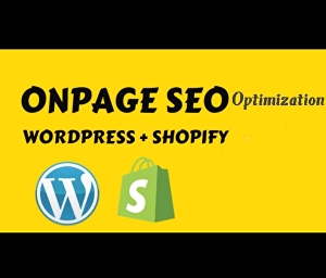 I will do on page optimization for higher google ranking