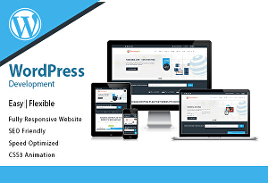 I will redesign and build a beautiful wordpress website for you
