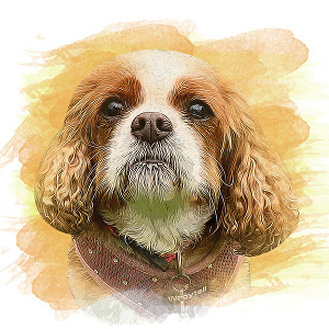 I will draw realistic  pet portraits into oil painting style