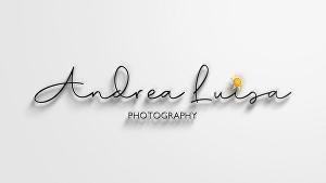 I will design unique modern logos For Photographers