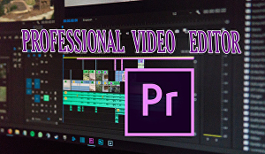 I will edit your videos professionally
