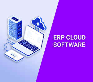 I will create erp management software