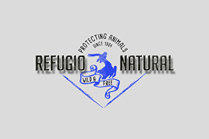 I will create high quality vintage logo just for you