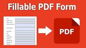 I will Convert Your Document  To an Editable, PDF Fillable Form