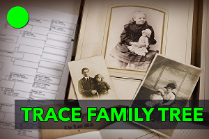 I will trace your family tree