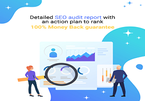 I will generate an SEO report for your website